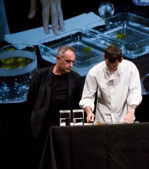 Presentación curso Ciencia y Cocina en Harvard