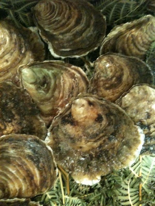 La bandeja de ostras