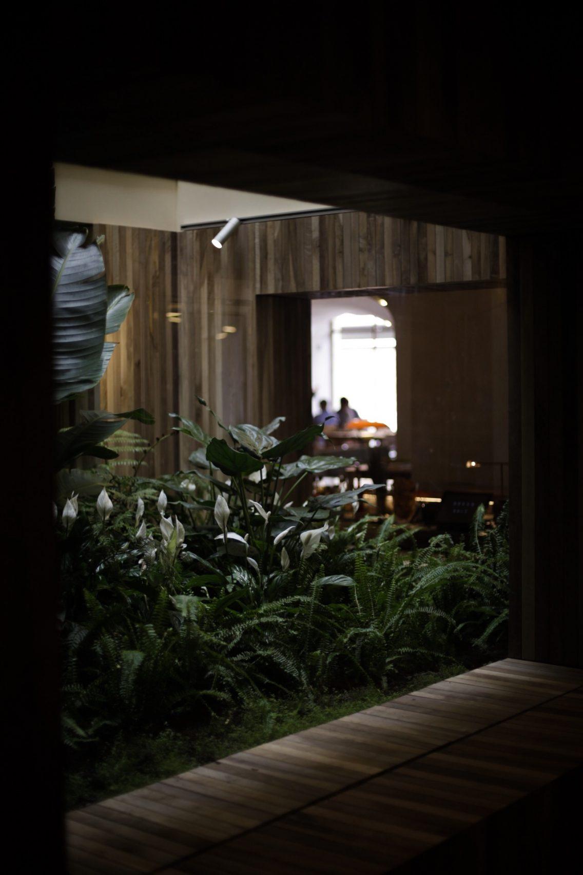 El jardín tropical interior