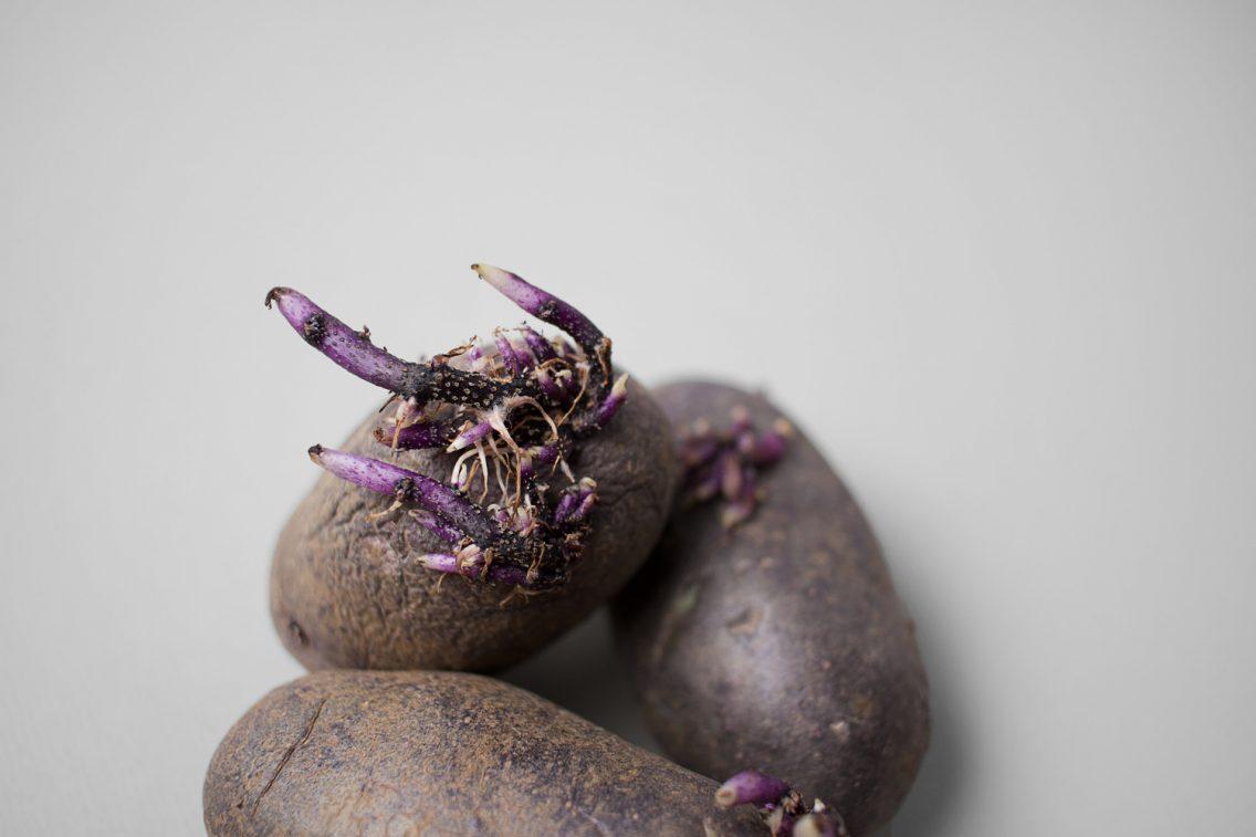 Una verdura imperfecta